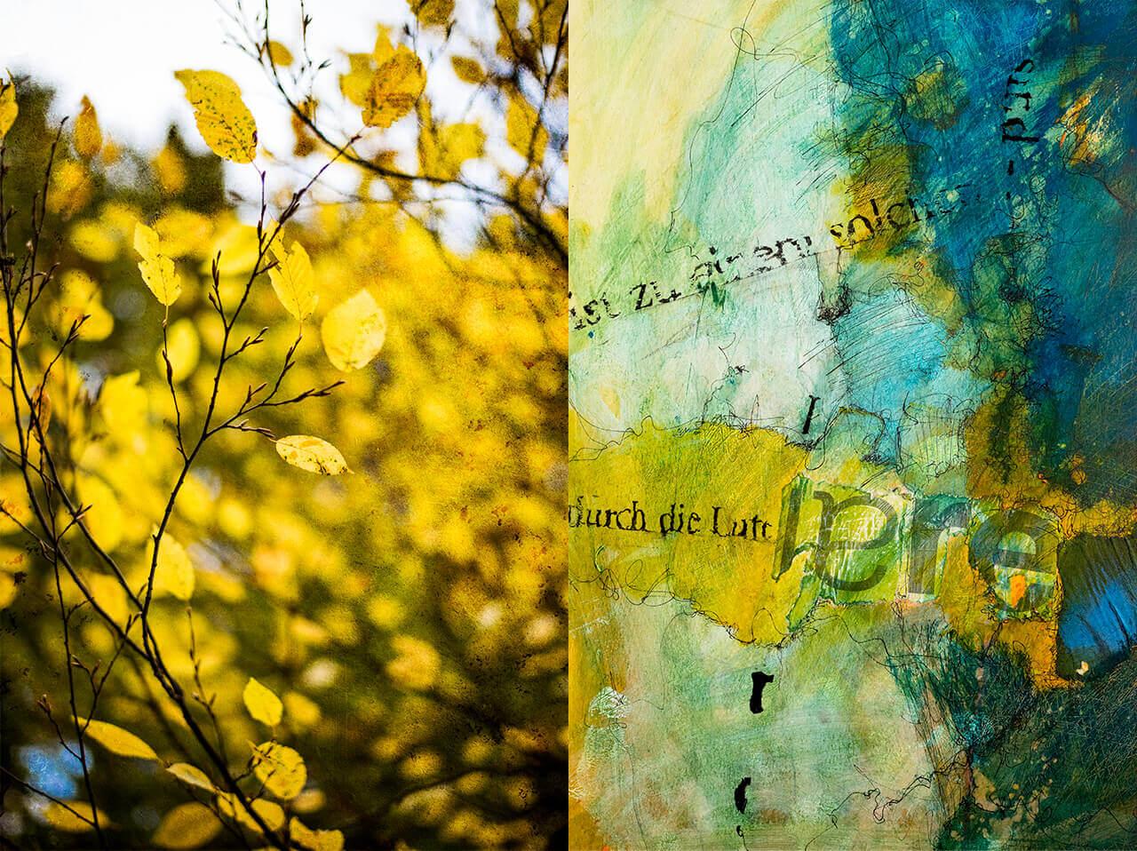 Heidi Simon: Duets - Air    Four Elements